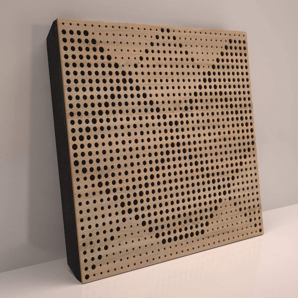 Sound Absorption-Diffuse Acoustic Panel «Wilds» for rec.studio